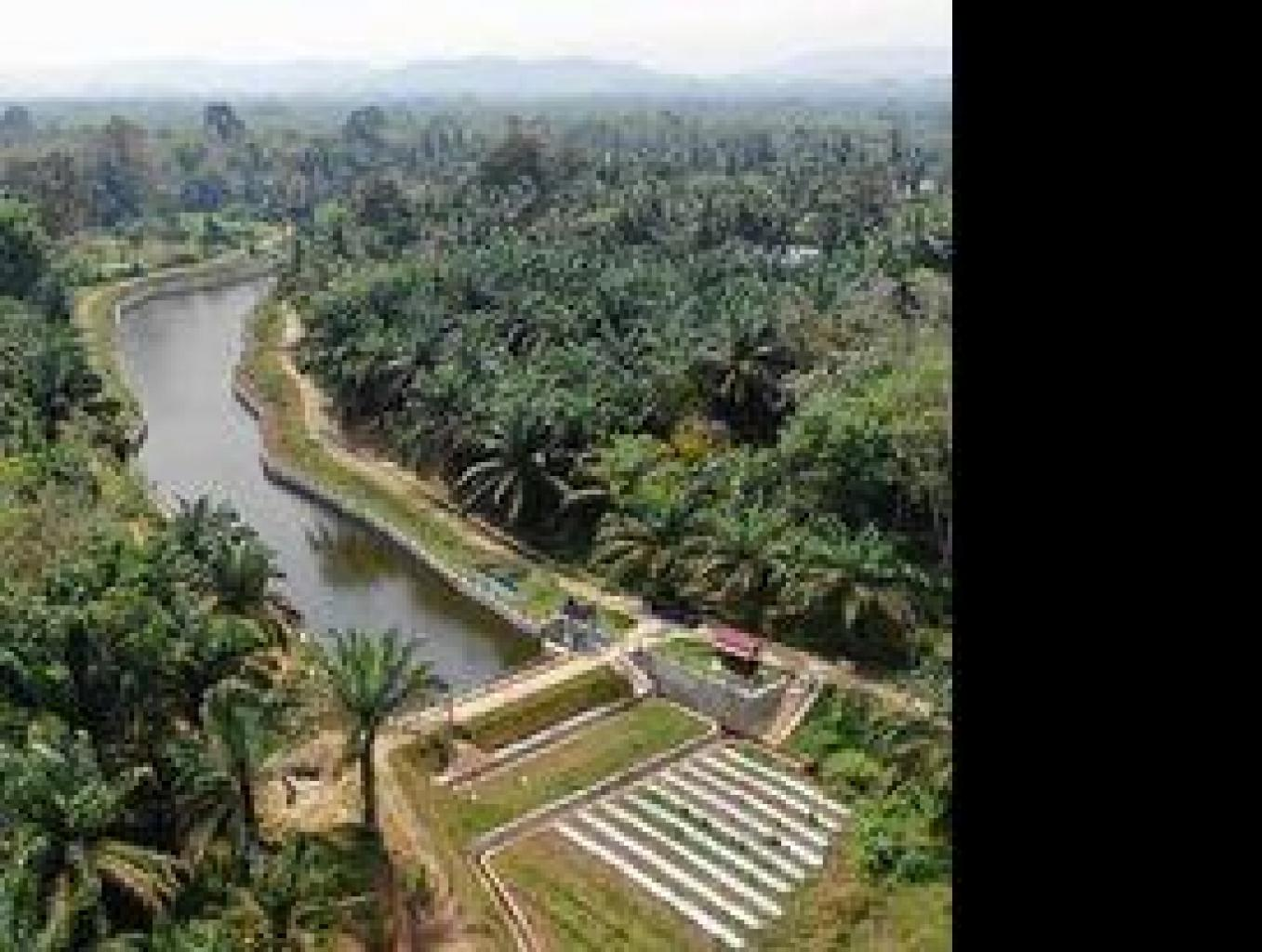 Desa Wisata Embung Gajah Meno
