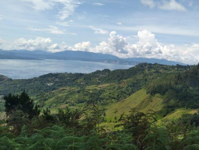 Desa Wisata Simangulampe
